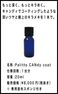 Pallitto, Pallitto DIYコーティング, デリカD5,DIY コーティング コツ,DIY コーティング ポイント,パリッと